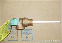 温度压力安全阀(进口)