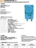 防爆电磁起动器(II C)