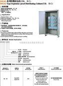 防爆配电柜(II B、II C)
