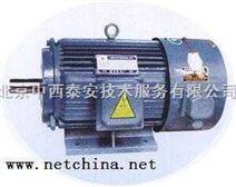 变频调速电动机(110KW)