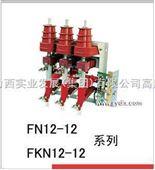 FN12-12 FKN12 户内高压负荷开关 德力西