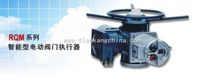 rqm系列智能型电动阀门执行器(瑞基)