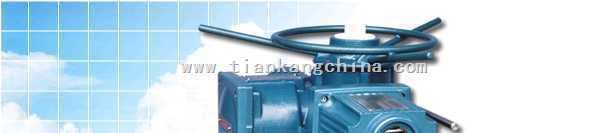 ra系列-瑞基-ra系列阀门电动装置