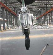 "OCS-SZ -BC人性化科技""15吨无线电子吊秤/30吨吊挂秤""理性的选择"