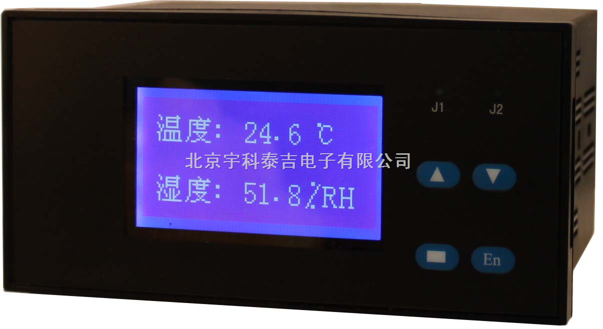 智能双通道液晶电压显示调节仪