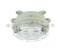防爆环形荧光灯|免维护防爆环形荧光灯|CCD96环形防爆荧光灯