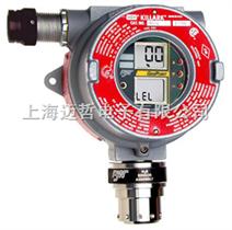 GP-WD加拿大BW可燃气体监测仪GP-WD
