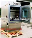 MAX-WSZ-225/10温湿度振动复合式试验箱