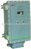 防爆氢分析仪 型号:X5DJYQ-HF300