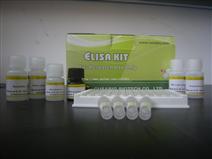 人水通道蛋白1(AQP-1)ELISA Kit