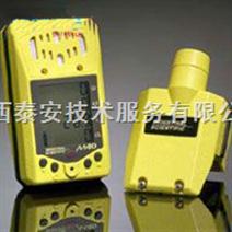多气体便携式检测仪