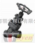 进口Y型焊接高压截止阀