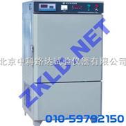 砖冻融试验箱 DR-2A型