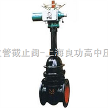 Z941T、Z941W、Z941H 型 PN10、PN16 铁制电动楔式闸阀