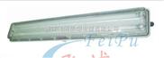 供应BYS系列防爆防腐全塑荧光灯(IIC)