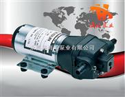 DP型微型隔膜泵-DP型微型隔膜泵