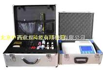 食品二氧化硫检测仪(10通道) 型号:5HHXSJ10EYHL