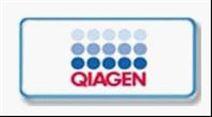 本公司代理  QIAGEN