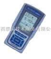 Eutech COND600-优特水质专卖-便携式多参数水质测定仪(电导率/总溶解固体量(TDS)/温度)