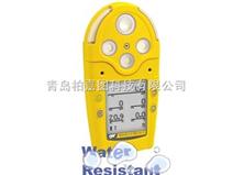 便携式VOC检测仪