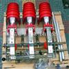 FKN12-12DR/T125-31.5高压负荷开关