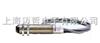CI-2B美国雷泰RaytekCI2B在线式红外测温仪CI-2B美国雷泰RaytekCI2B在线式红外测温仪